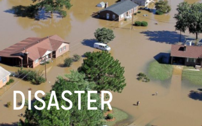 Disaster Relief Opportunities