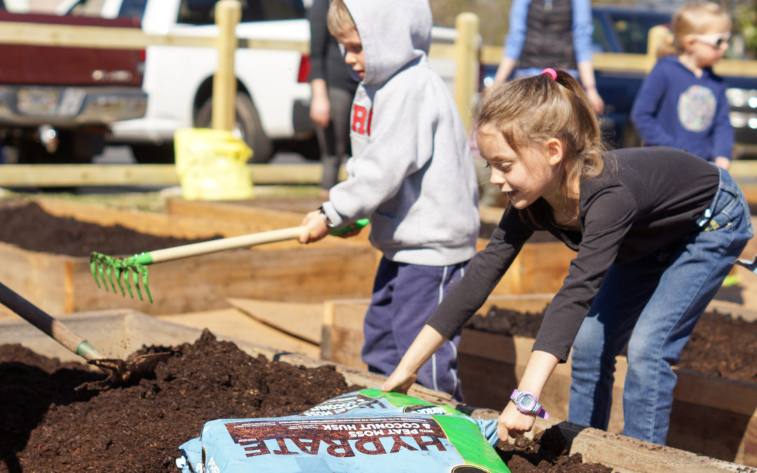 Community Garden Needs You!