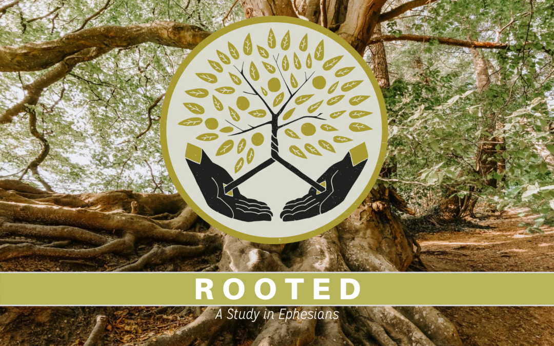 Rooted in Grace: A Study in Ephesians